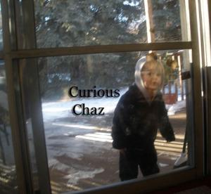 Curious Chaz