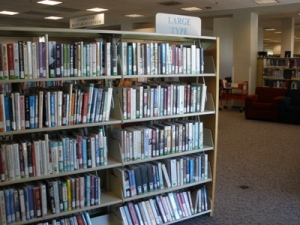 Shelves of books at local libary