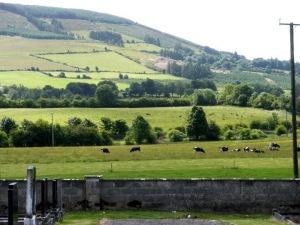 Upperchurch cemetary in Tipperary, Ireland