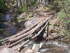ice on log over rushing creek