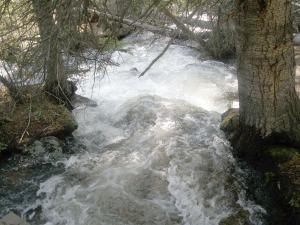 Ouzel Falls Hike in RMNP