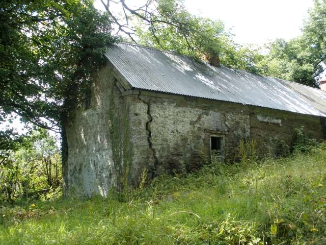 Irish Homestead