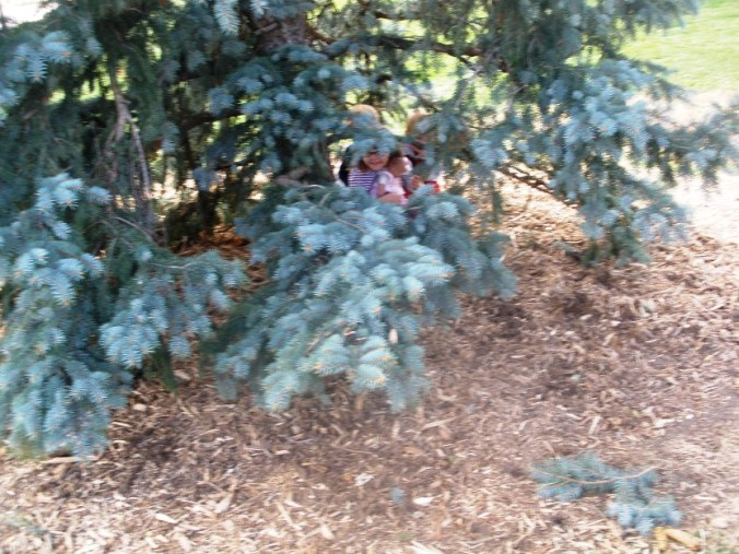 Kids hiding under a tree branch