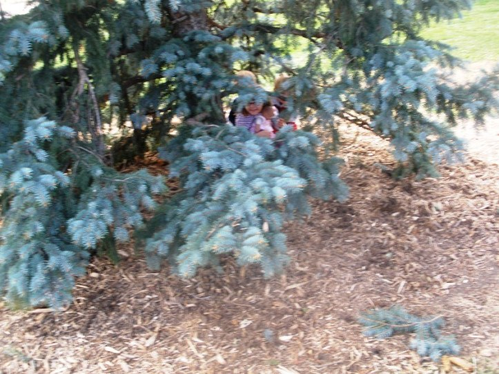 Kids hiding under a tree branch