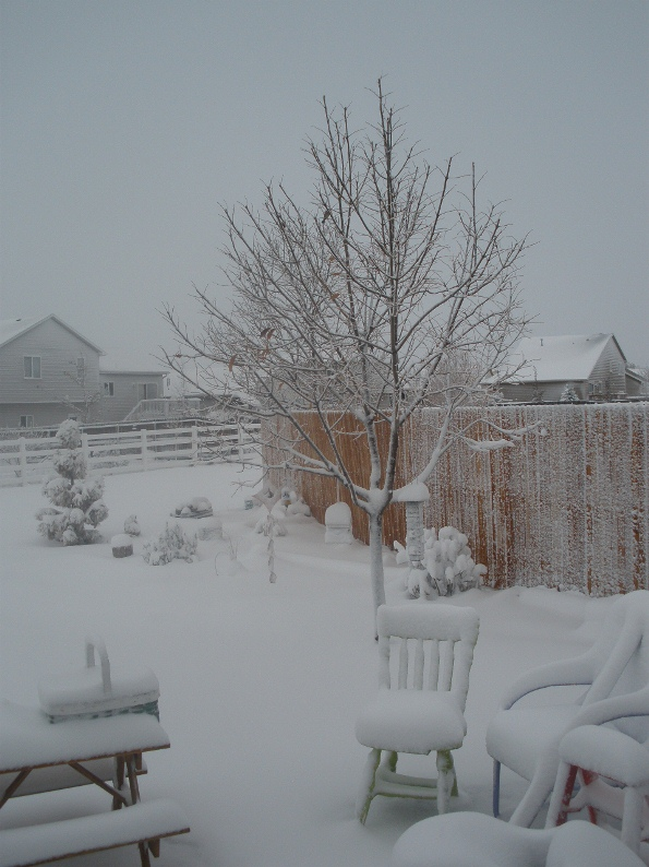 Colorado snow in Oct