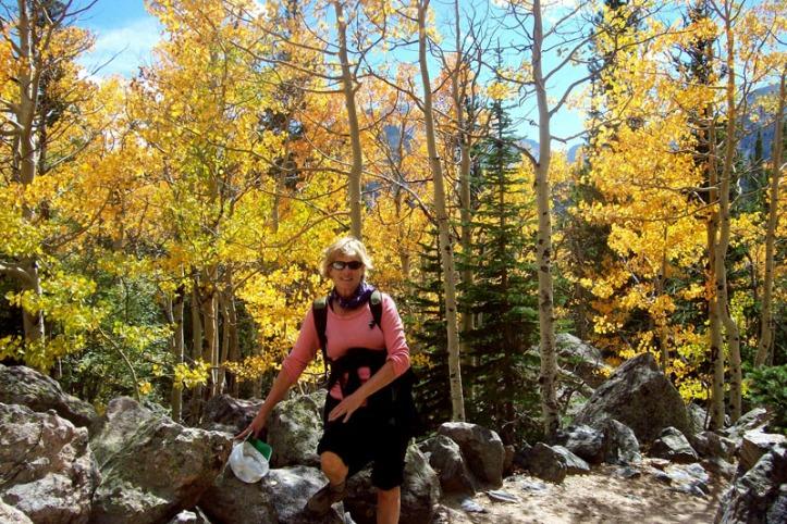 Golden aspens in Rocky Mountain National Park, Sept 2012