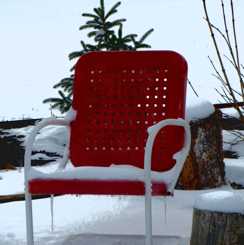 Lovely snowfall in my Colorado backyard in March 2013