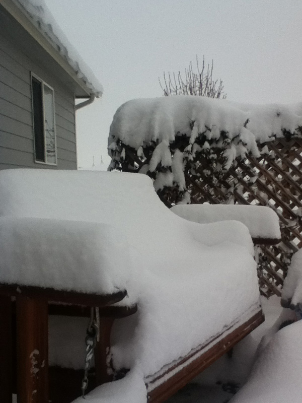 1-ten inches and counting - 4-16-2013