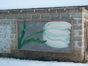 Tulip painted on garage in Lafayette, CO