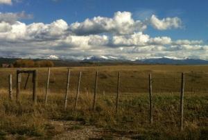 Fence posts along dirt rd in Felt ID
