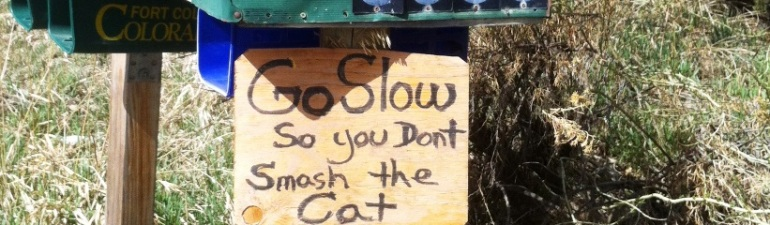 Signpost on mailbox says, Go slow or you'll smash the cat.