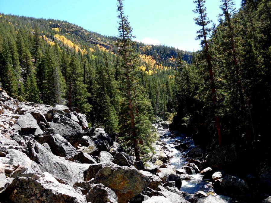 aspen gold2 - Big South Hike
