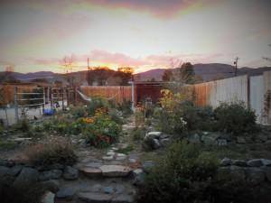 Carson City walk - write 31 days challenge