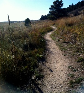 Maxwell Trail, Fort Collins Colorado